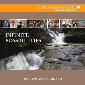UT College of Engineering Annual Report 2003-2004