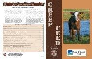 creep feeding - Beeflinks