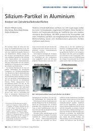 Silizium-Partikel in Aluminium - QZ-online.de