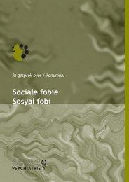 NVvP vertaling Sociale fobie (Turks) (PDF bestand ... - GGZ inGeest