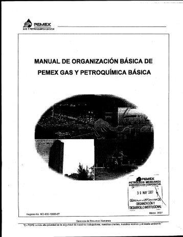 Manual de Organización Básica - Pemex Gas y Petroquímica Básica