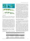 Functional Characterization of PaLAX1, a Putative - Plant Physiology - Page 6