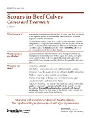 Scours in Beef Calves: Causes and Treatments - Oregon State ...