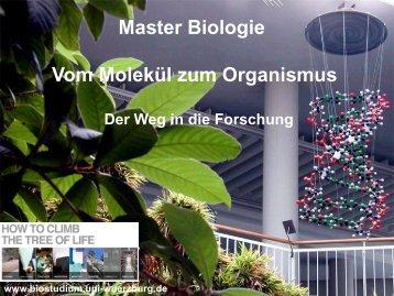 Master Biologie Vom Molekül zum Organismus - Biostudium.uni ...