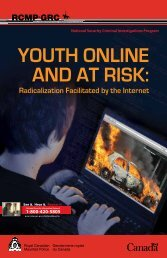 YOUTH ONLINE AND AT RISK: Radicalization Facilitated by