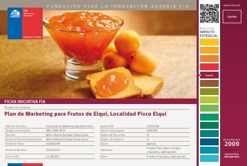 Plan de Marketing para Frutos de Elqui, Localidad Pisco Elqui - Fia