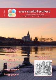 Senjabladet_2010_04 - Berg kommune