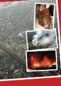 membakar-kalimantan - Page 7