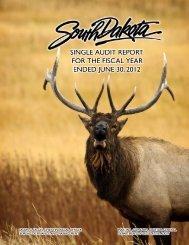 Comprehensive Annual Financial Report (CAFR) - Legislative ...