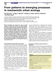 From patterns to emerging processes in mechanistic urban ecology