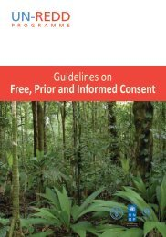 Guidelines on Free, Prior and Informed Consent - About the ...