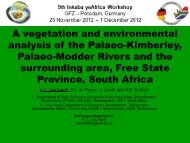 A vegetation and environmental analysis of the Palaeo ... - Inkaba.org