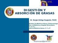 Digestión y Absorción de Grasas - eTableros