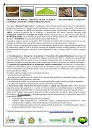 relazioni - Archivio Rete Poli - Arsia