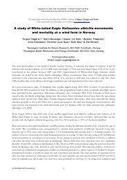 A study of White-tailed Eagle Haliaeetus albicilla movements
