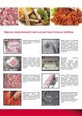 Нарезка замороженного мяса с соблюдением ... - Treif - Page 3