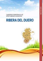 Oportunidades de negocio en la Ribera del Duero - AJE Burgos
