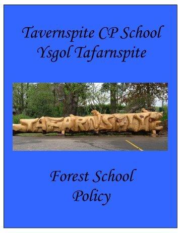 Tavernspite CP School Ysgol Tafarnspite Forest School Policy