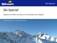 2. Umfassende Werbemaßnahmen für Ihre Skiregion/Ihr Skigebiet