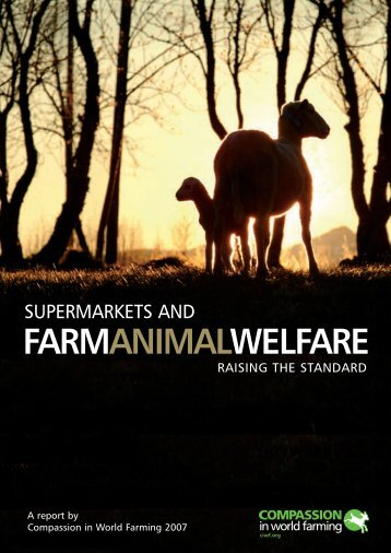 Supermarkets and Farm Animal Welfare 2007 - Compassion in ...