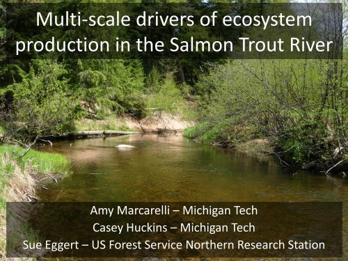 Multi-scale drivers of ecosystem production in the Salmon Trout River