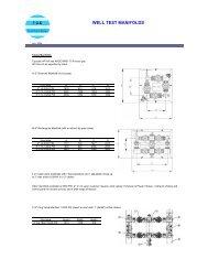 DS-welltest manifolds-0407.pdf - FCE
