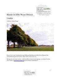 Bäume im Elbe Weser Dreieck Linden