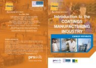 download a copy of the introduction to The Coatings ... - Proskills