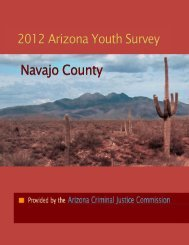 Risk and Protective Factor Profiles - Navajo County Drug Project