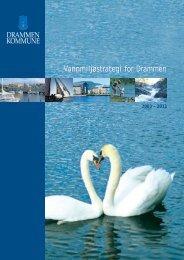 Vannmiljøstrategi 2003-2011 - Drammen kommune