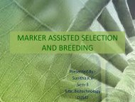 marker assisted selection and breeding - (CUSAT) – Plant ...