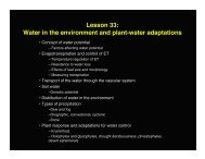 Lesson 33: Water in the environment and plant-water adaptations