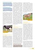 RBW aktuell Mai 2005 - Rinderunion Baden-Württemberg e.V. - Seite 7