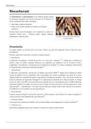 Biocarburant - Patrick MONASSIER - Free