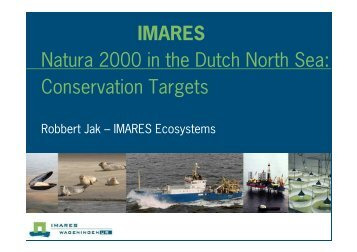 IMARES Natura 2000 in the Dutch North Sea ... - Wageningen UR