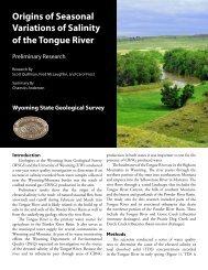Origins of Seasonal Variations of Salinity of the Tongue River