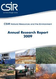 NRE Research Report 2009 - CSIR