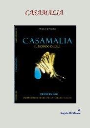 Angelo Di Mauro – Casamalia - Vesuvioweb