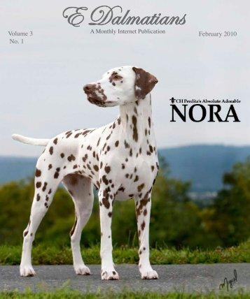Download Feb Edition in PDF - E Dalmatians