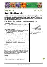 Hager i blokkområder - Hageselskapet