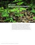 KPL Antibodies and Conjugates Catalog - Page 4