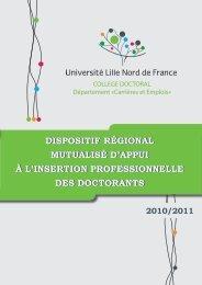 dispositif régional mutualisé d'appui à l'insertion ... - LIFL