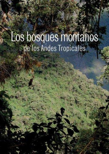 Los bosques montanos de los Andes Tropicales - InfoAndina