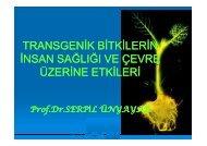 transgenik bitkilerin insan sağlığı ve çevre üzerine etkileri