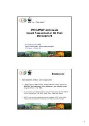 IPOC/WWF-Indonesia - Roundtable on Sustainable Palm Oil