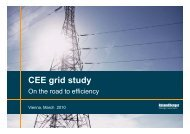 CEE Grid Study – On the road to efficiency - Roland Berger