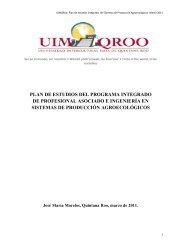 PLAN DE ESTUDIOS DEL PROGRAMA INTEGRADO ... - UIMQRoo