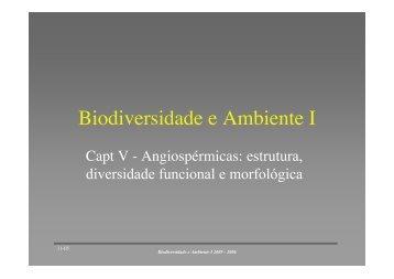 Estrutura, diversidade funcional e morfologica das angiospermicas