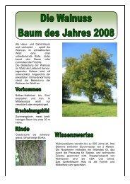 Als Haus- und Gartenbaum weit verbreitet - spielt die Walnuss im ...