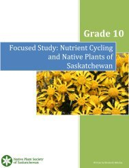 Grade 10 Nutrient Cycling Lesson Plan - Native Plant Society of ...